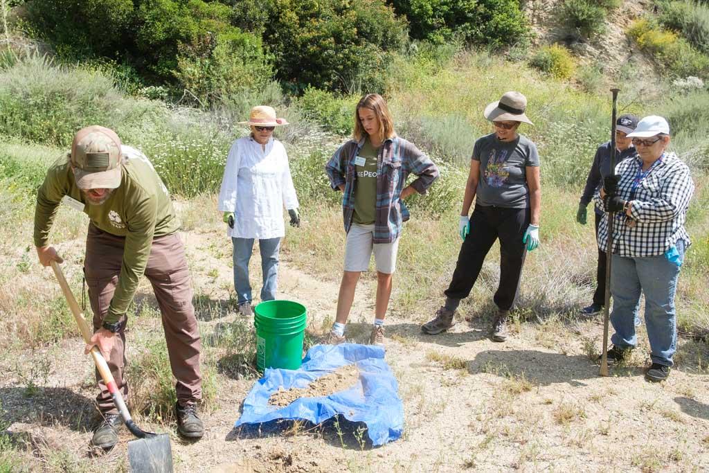 Padres Pioneros Sayre Site Plant-003