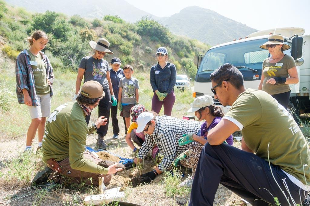 Padres Pioneros Sayre Site Plant-005